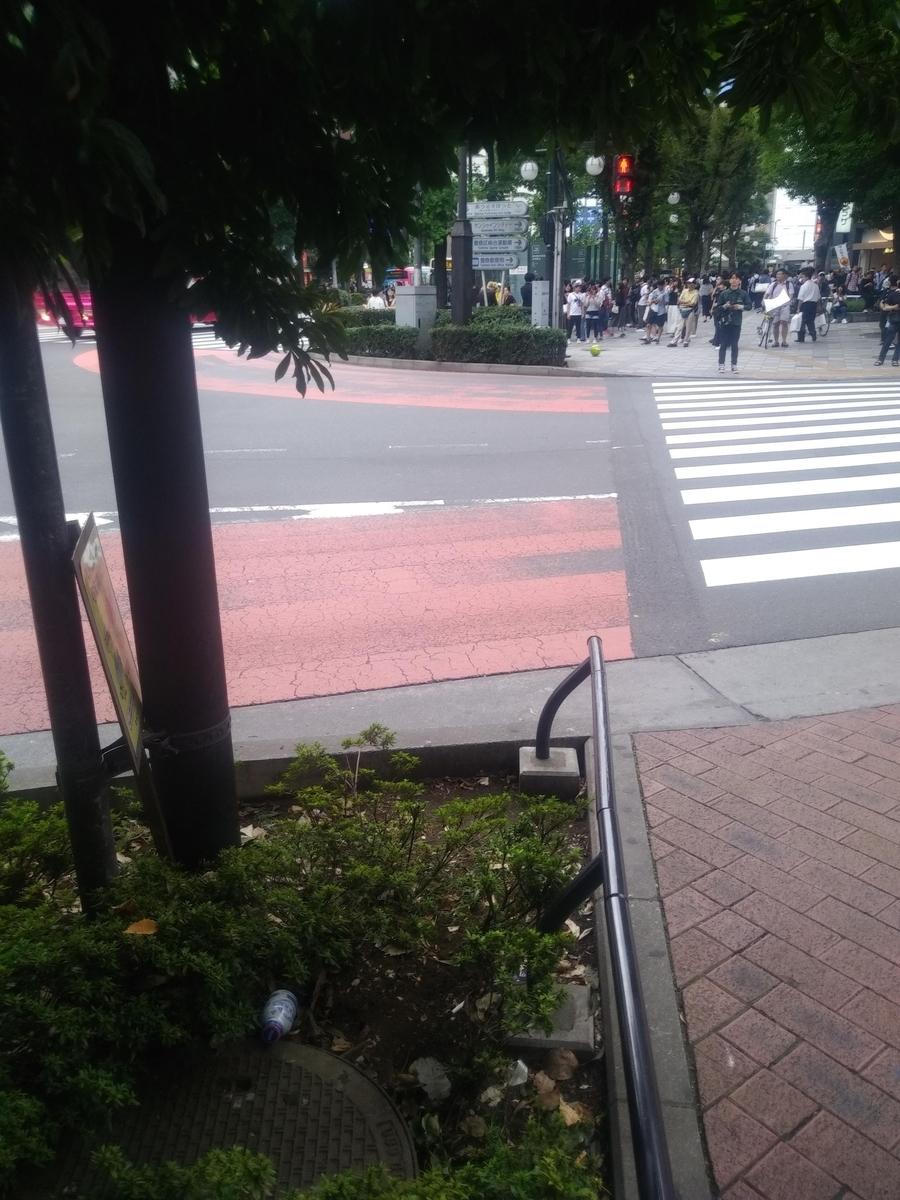 f:id:kaon-yokegawa:20201229170627j:plain