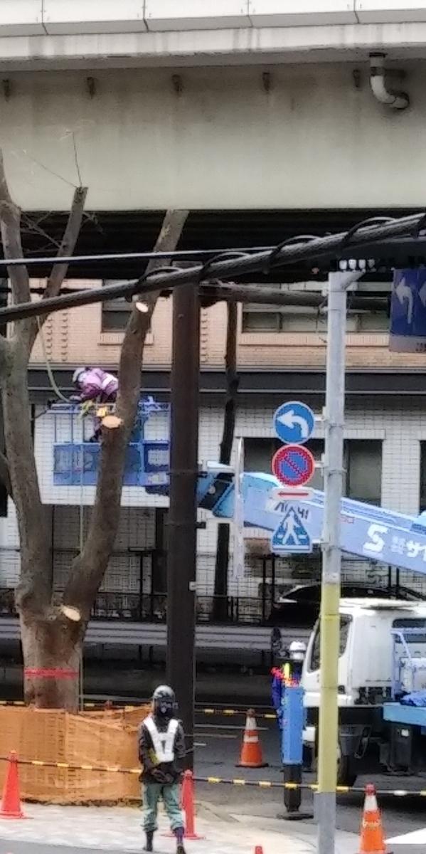 f:id:kaon-yokegawa:20210126131600j:plain