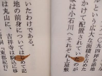 f:id:kaon-yokegawa:20210404112012j:plain