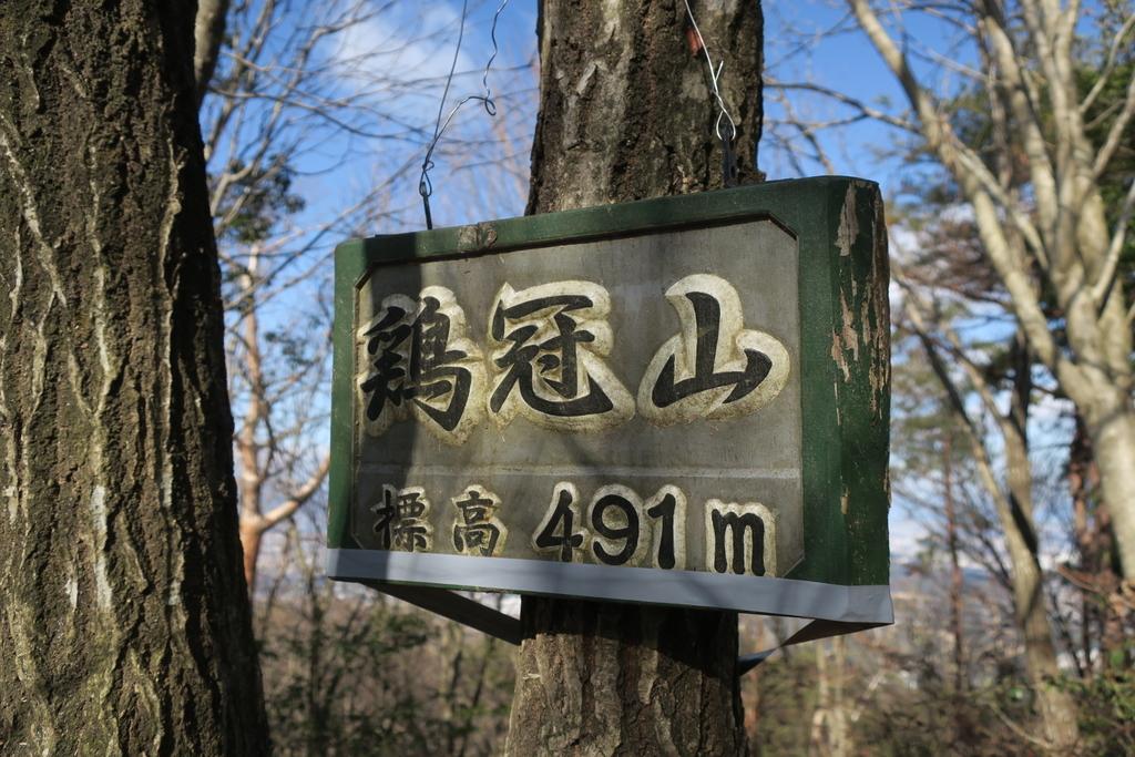 f:id:kaori-makimaki:20190115200836j:plain