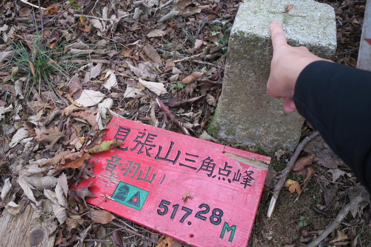 f:id:kaori-makimaki:20191103211715j:plain
