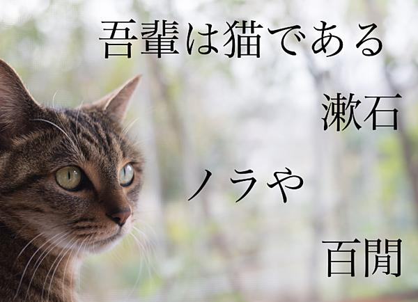 f:id:kaoruikeda:20170221184839p:plain