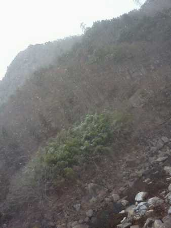 f:id:kaoseya:20111209174203j:image