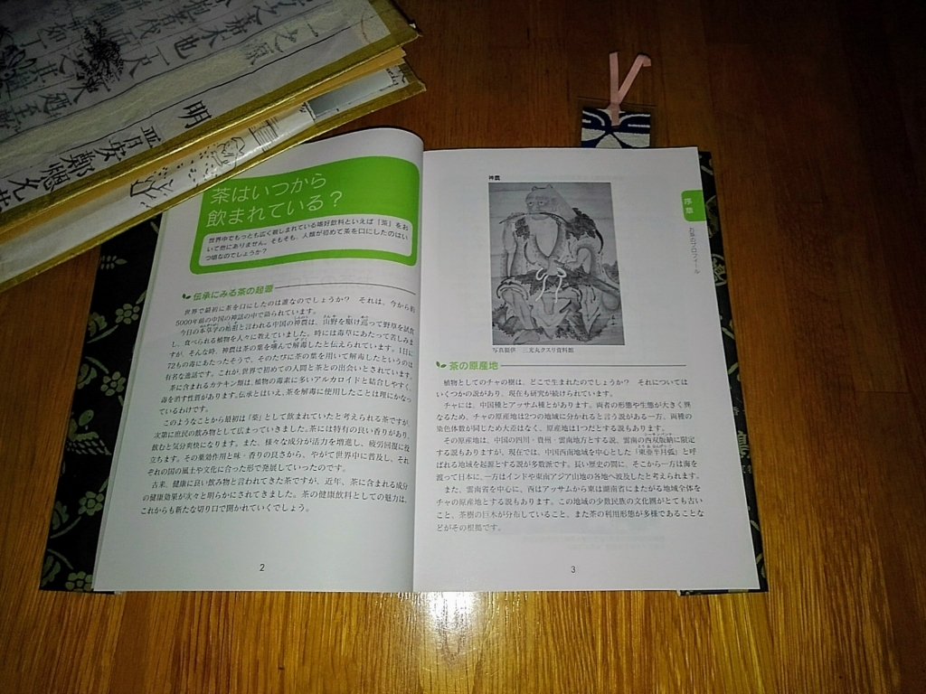 f:id:kapibarasanta:20171119103915j:plain