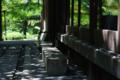 京都新聞写真コンテスト 妙心寺退蔵院『木漏れ日』