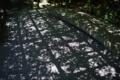 京都新聞写真コンテスト 妙心寺退蔵院『影格子』