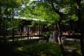 京都新聞写真コンテスト 建仁寺『潮音庭』