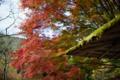 京都新聞写真コンテスト 白龍園『四阿と紅葉1』