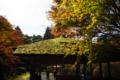 京都新聞写真コンテスト 白龍園『四阿と紅葉3』