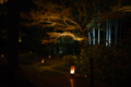 京都新聞写真コンテスト 宝泉院『ろうそくの灯り』