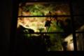 京都新聞写真コンテスト 宝泉院『花影』