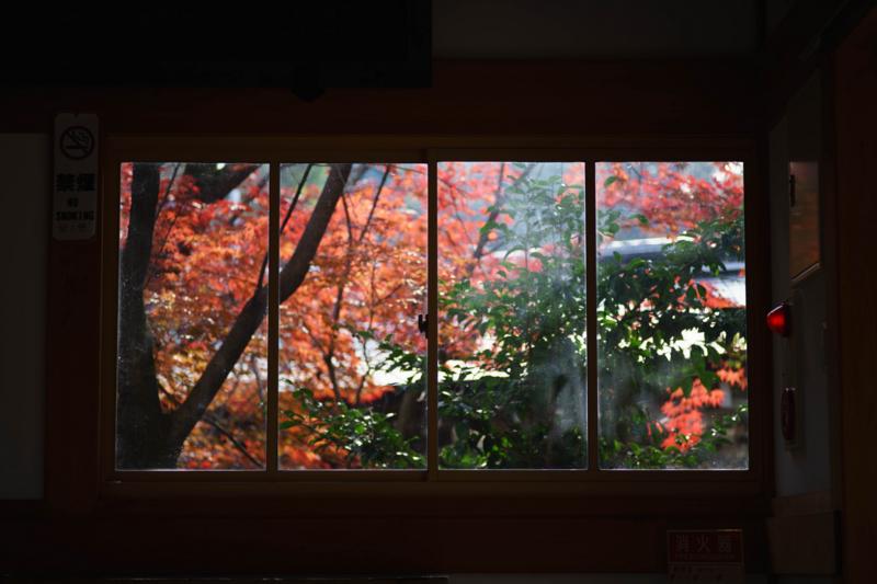 京都新聞写真コンテスト 長岡天満宮『懐古的借景』