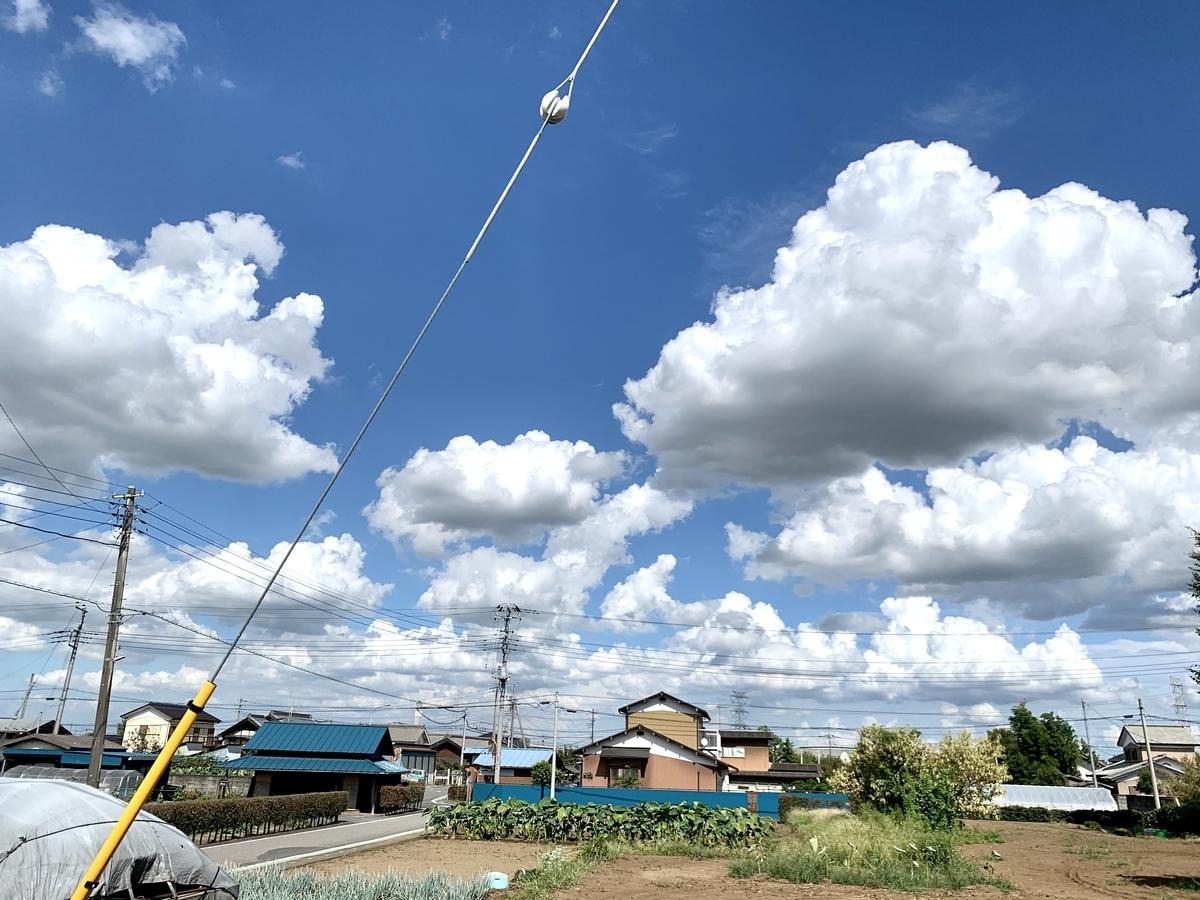 青空にもこもこ雲が多数浮かんでいる