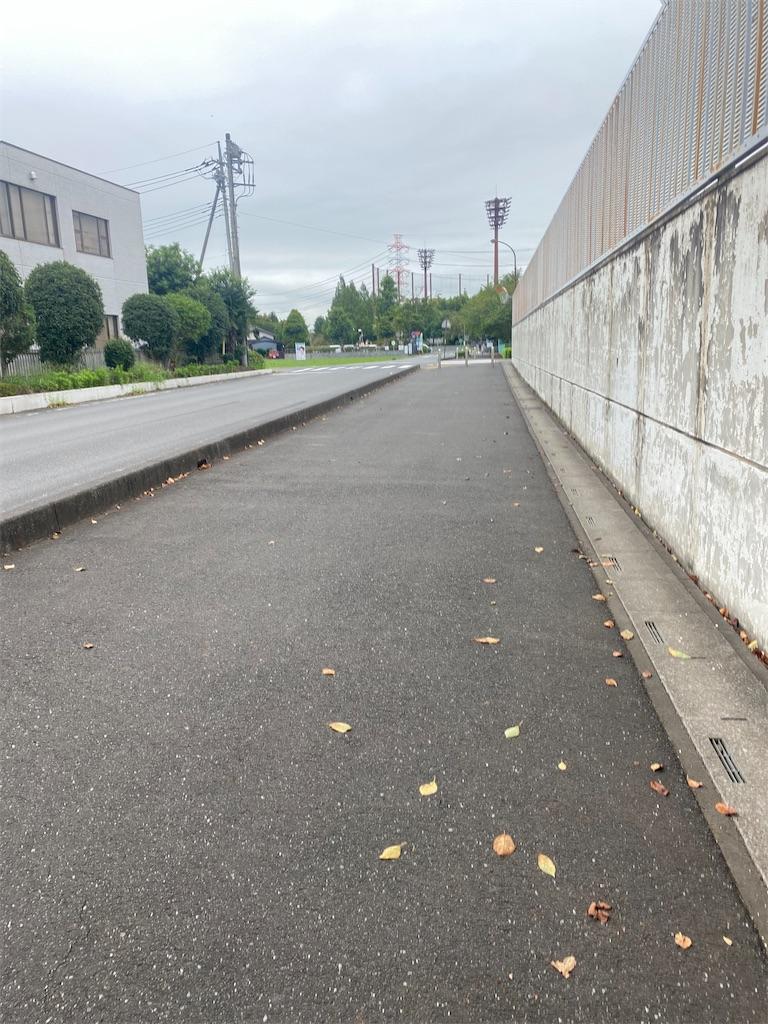 木々が生えていないアスファルト舗装の道路