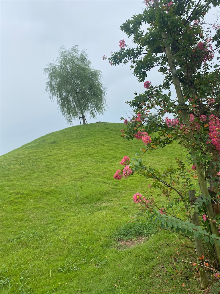 芝に覆われた小高い丘