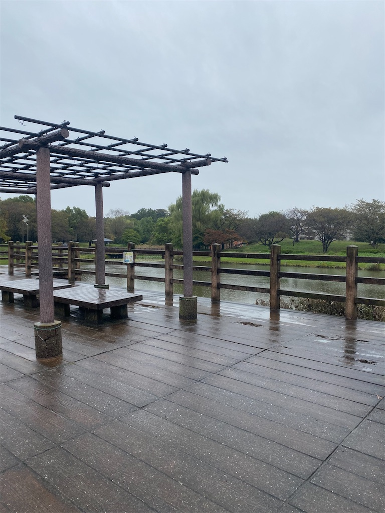 雨の中に藤棚があります。