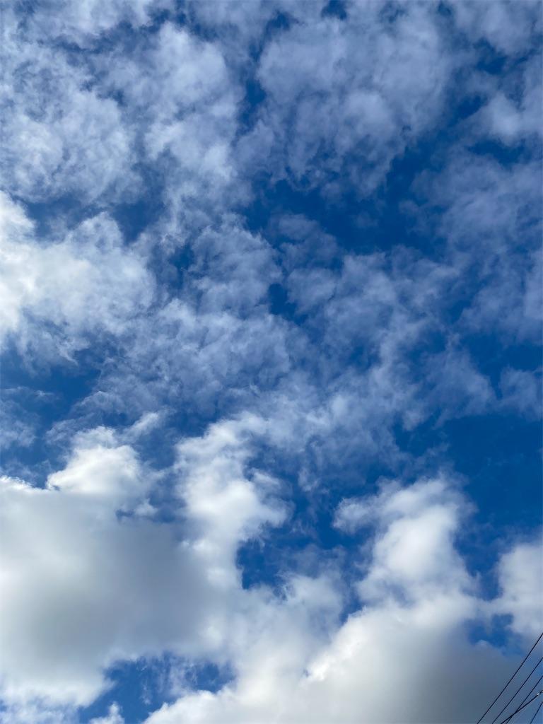 青空にひつじ雲が浮かんでいる