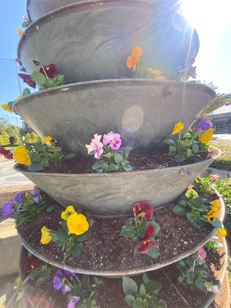 花が咲いている塔状になった花壇
