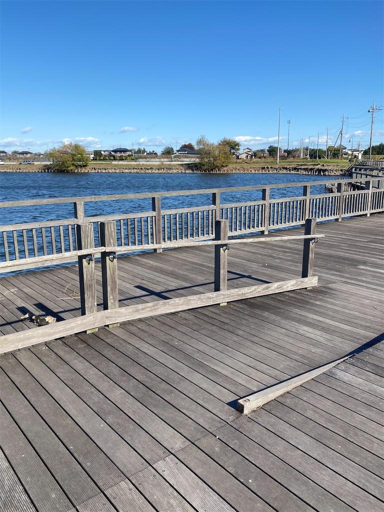 沼の中の橋