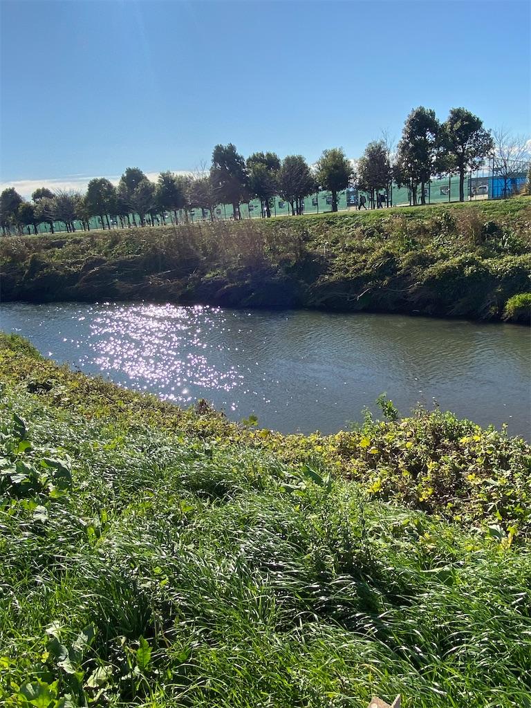 川幅20メートルくらいの川が流れている