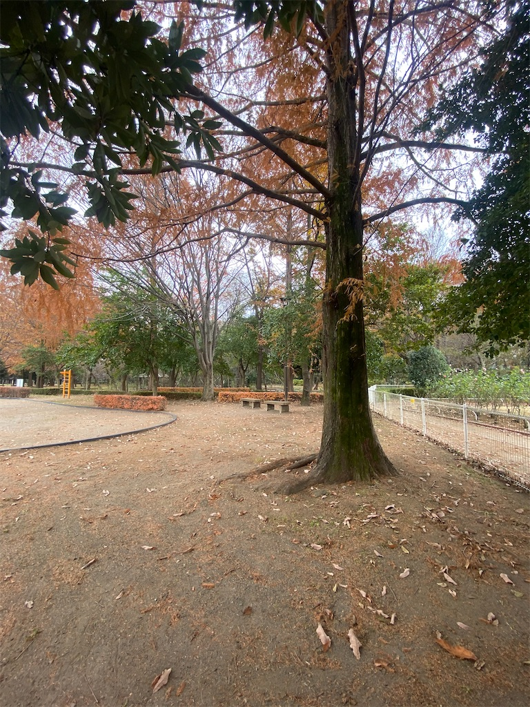 誰もいない公園