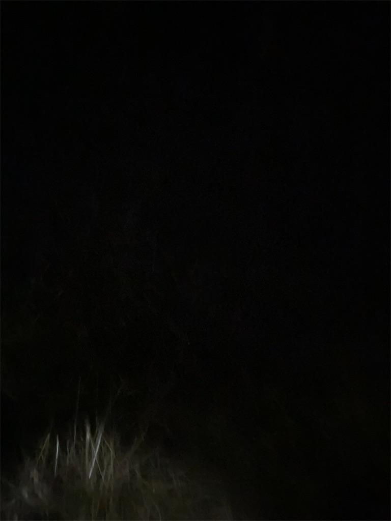 完全な暗闇