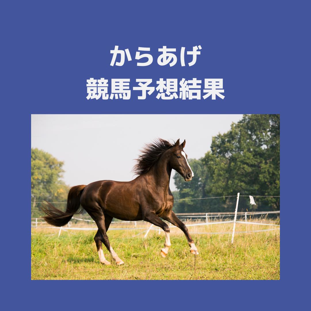 f:id:karaageboy:20210712084439p:plain
