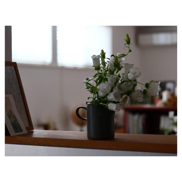 f:id:karai-fleuristes:20200321222215j:image