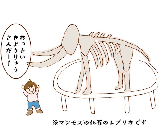 北海道博物館のマンモスの化石