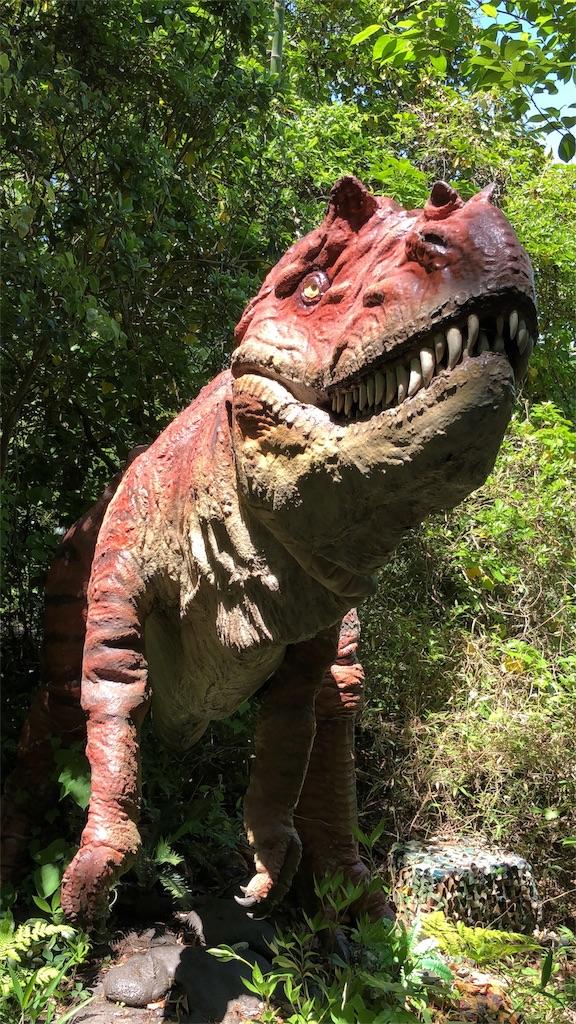 ディノアドベンチャー名古屋のアロサウルスの顔