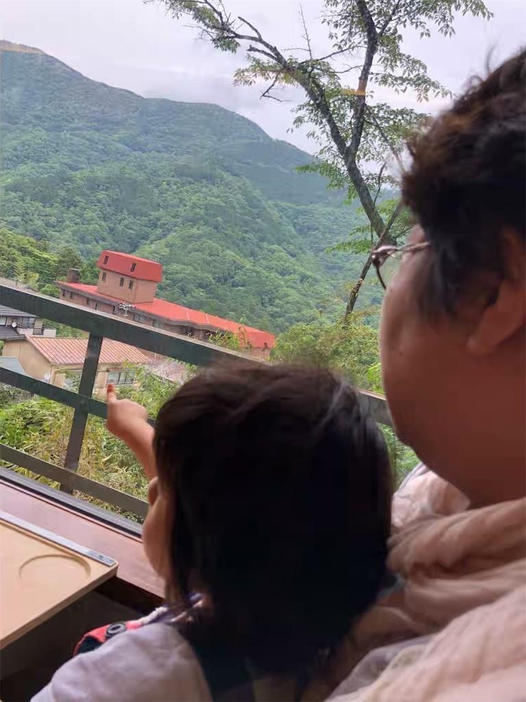 箱根登山電車から見た外の風景