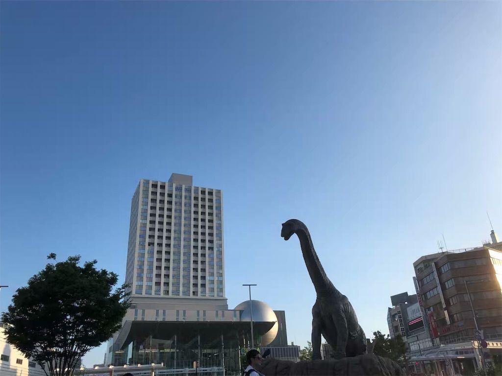 福井の町と恐竜