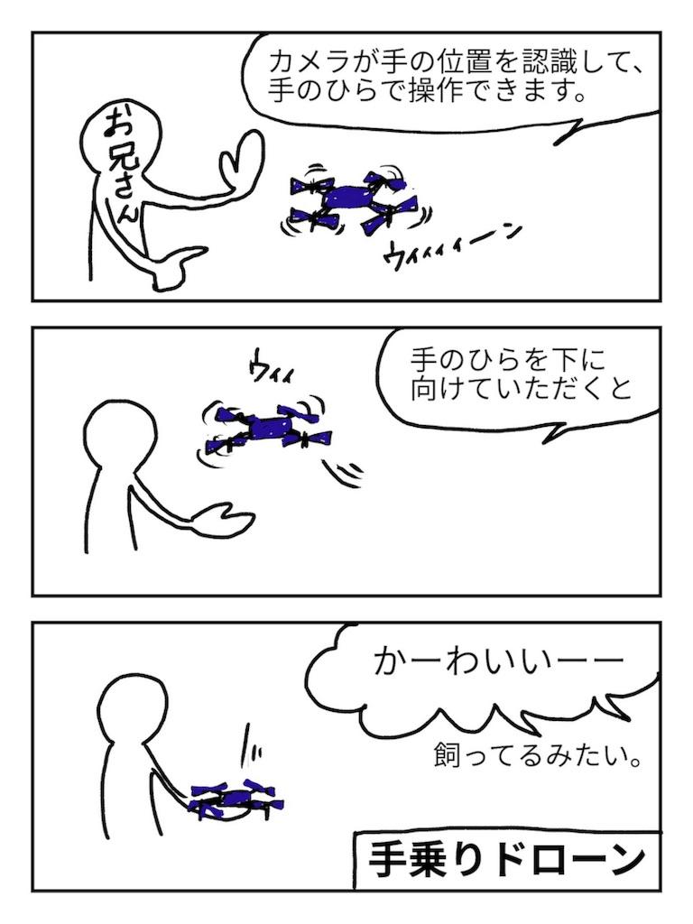 f:id:karasu-oohasi:20181115233833j:image