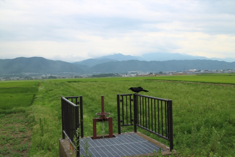 f:id:karasugawa:20160802235921j:plain