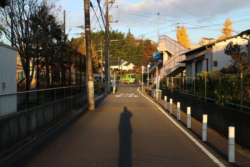 f:id:karasugawa:20161209232720j:plain