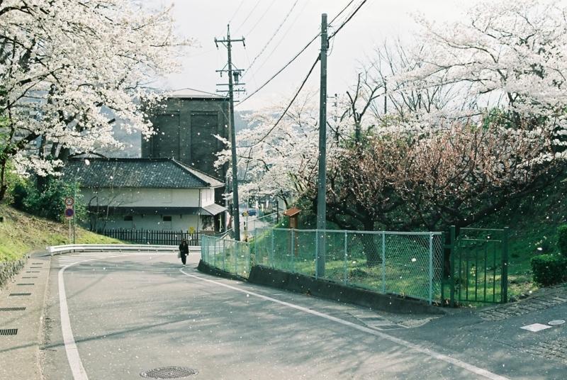 f:id:karasugawa:20180506012850j:plain