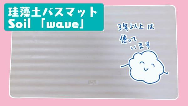 f:id:karasumi-san:20201112141634j:plain