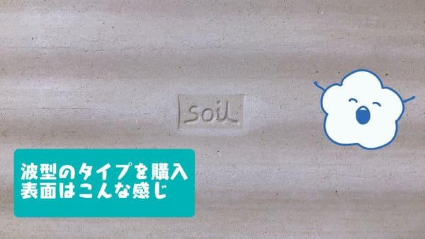 f:id:karasumi-san:20201112144214j:plain