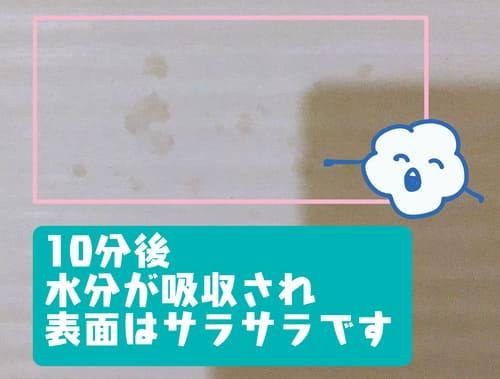 f:id:karasumi-san:20201112153509j:plain