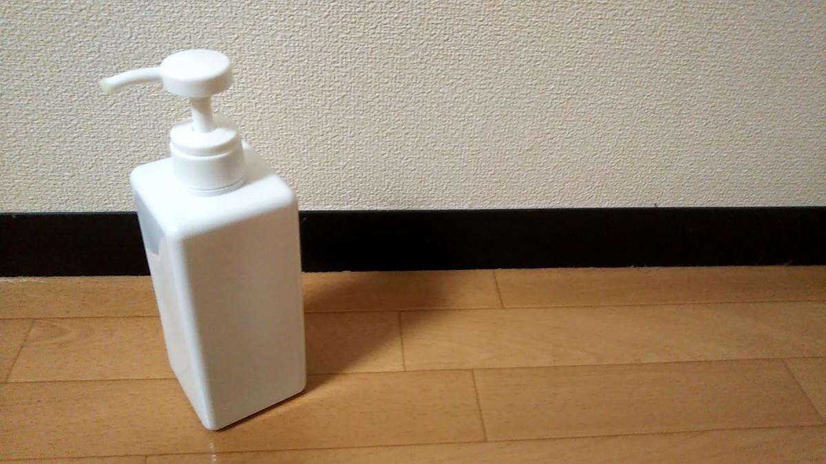 f:id:karasumiyama:20200308224939j:plain