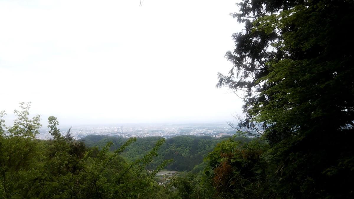 f:id:karasumiyama:20200505161808j:plain