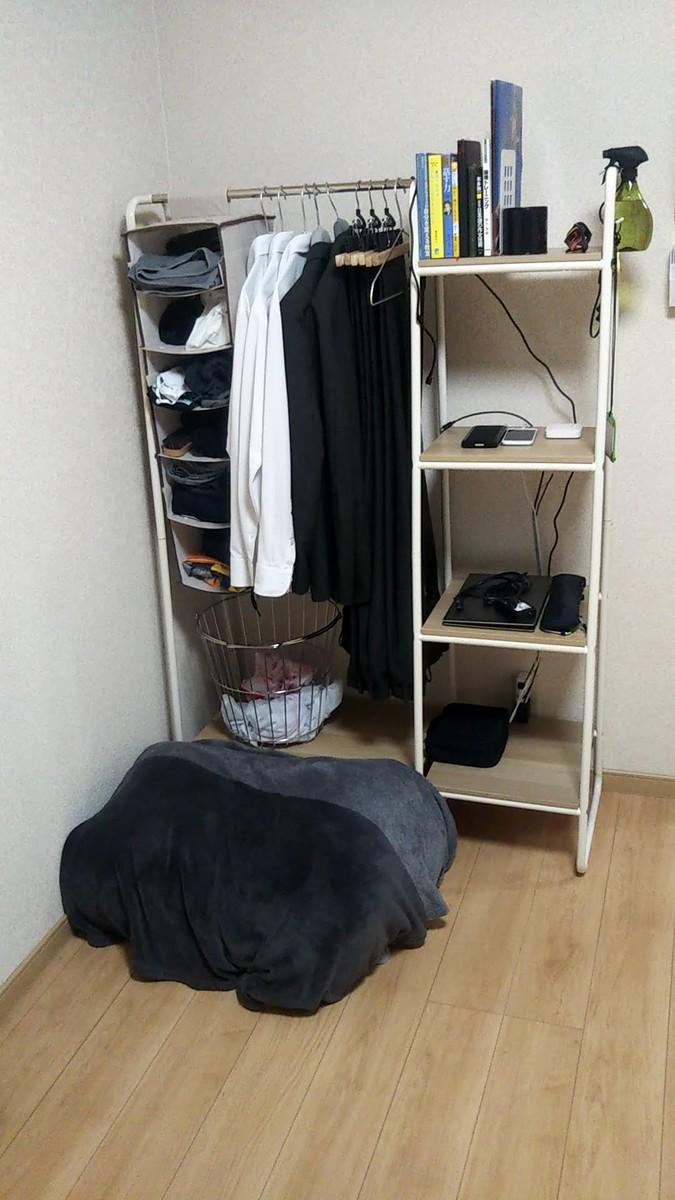 f:id:karasumiyama:20200627212656j:plain