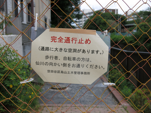 f:id:karasunekotan:20190603104108j:plain