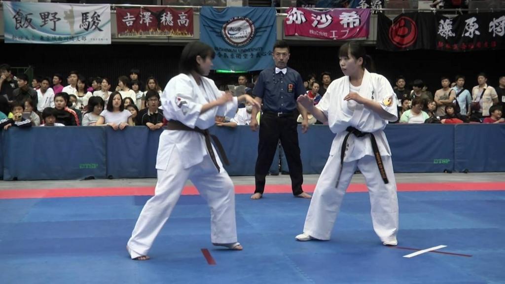 f:id:karate-jkf:20180225141931j:plain