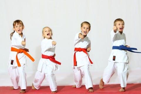 f:id:karate-jkf:20180301132210j:plain