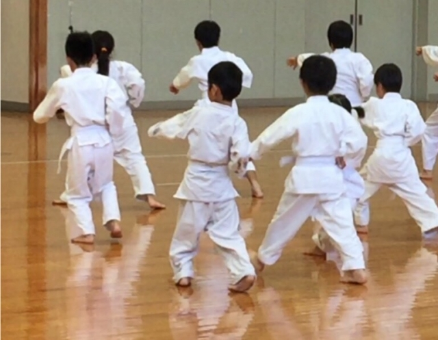f:id:karate-kids:20170622115543j:plain