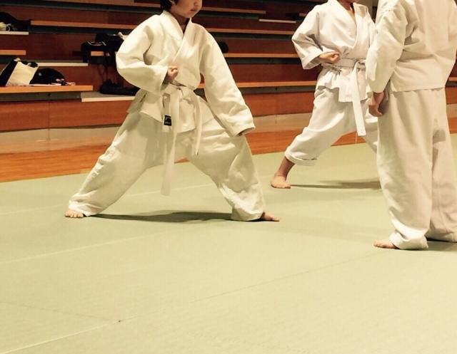 f:id:karate-kids:20180115143928j:plain