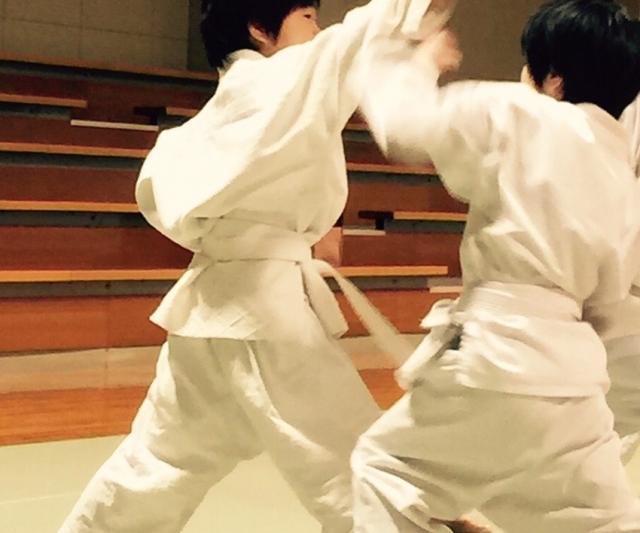 f:id:karate-kids:20180208224755j:plain