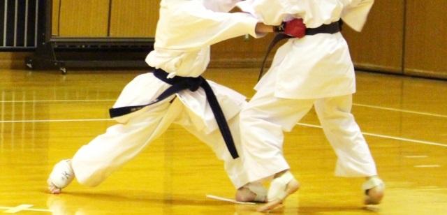 f:id:karate-kids:20181115153516j:plain