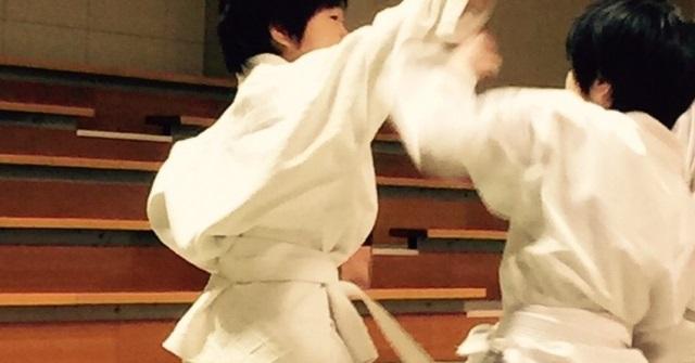 f:id:karate-kids:20181122142417j:plain